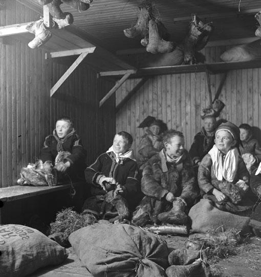 samer i norge i dag